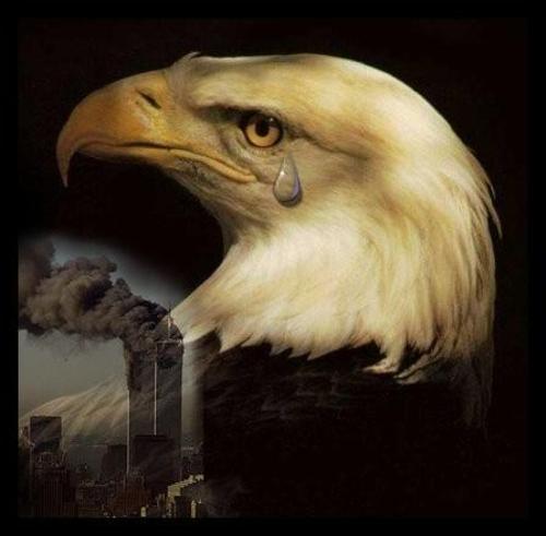 Eagle_tears1_1