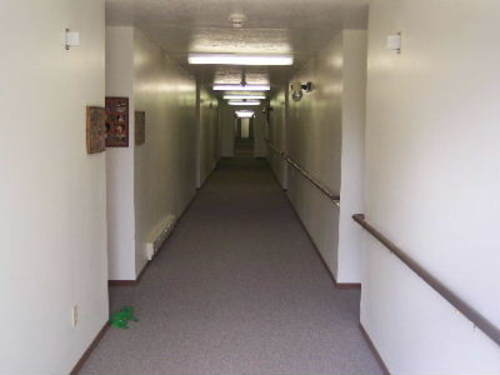 Hallway_frog_9_8_2005_1