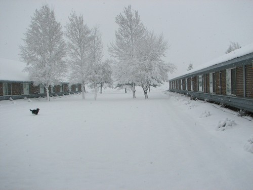 Snowinspring4162006