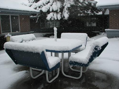 Snowinspring5