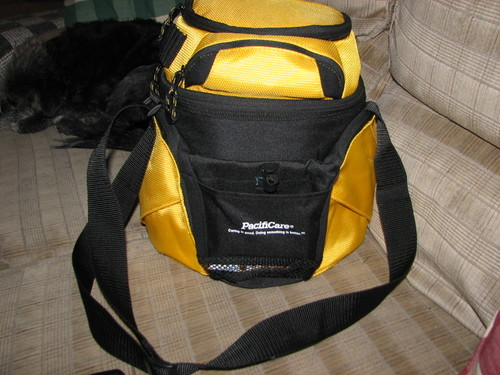 Yellowbag1